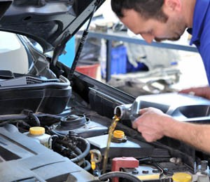 oil change transmission service serpentine belt replacement
